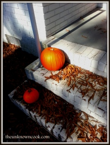 Lonely pumpkins sitting on the doorsteps of our home. This is about to change!